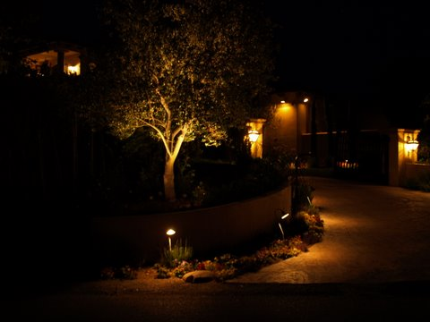 Landscape Lighting Agoura Driveway